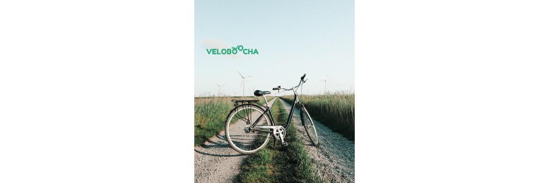 Польза от велосипедных прогулок